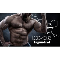 Ligandrol ( LGD-4033 ) 10mg - SARMs